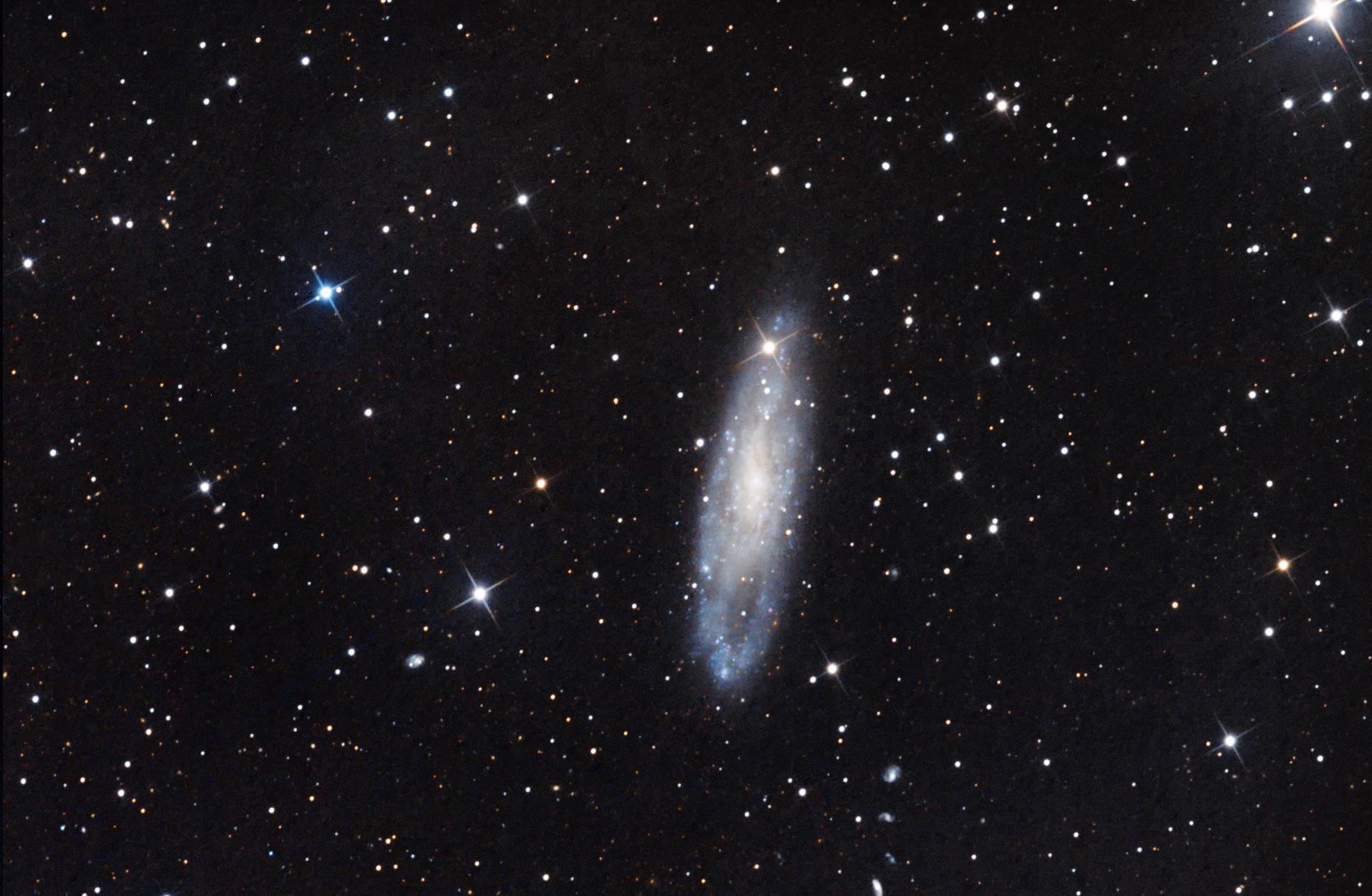 NGC 247 Galaxy in Cetus