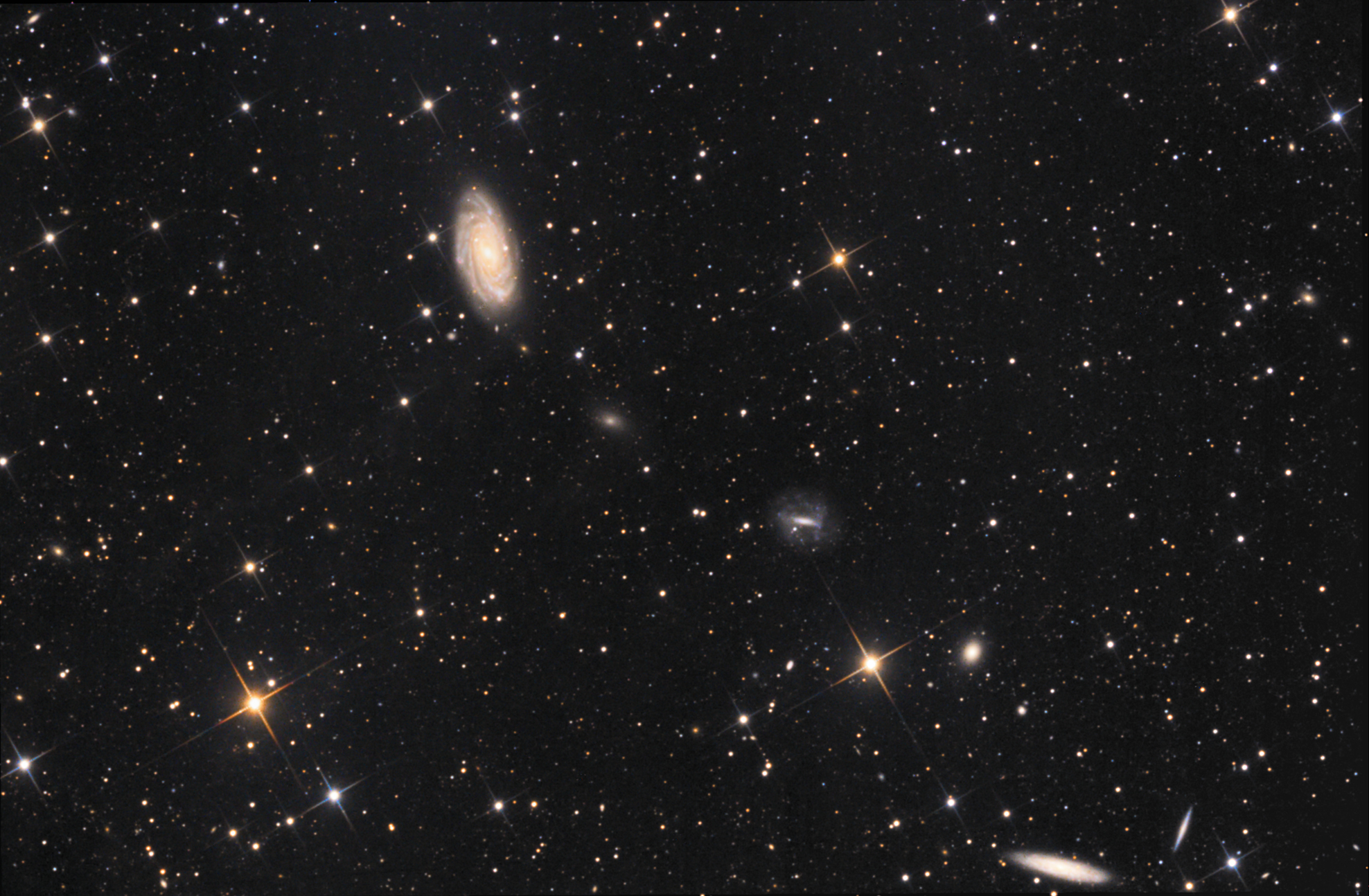 NGC 3953 Galaxy in Ursa Major